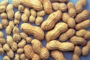 image_january-05-2017_reuters_peanut